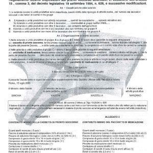 Copia Decreto Min 388 del 15.07.03-0